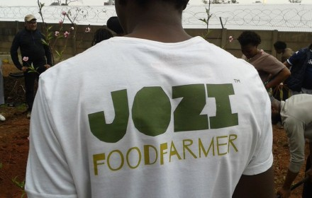 Jozi Food Farmer